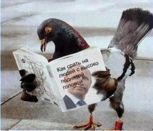 Как-Путину-срать-на-людей-с-высоко-поднятой-головой