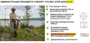 вес-щуки-Путина-всего-7-кг1-650x316