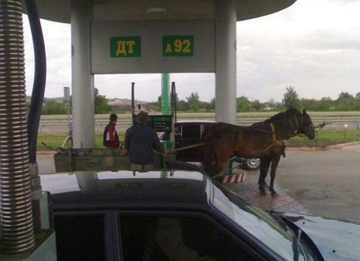 Мужчина приехал подзаправить своих лошадок