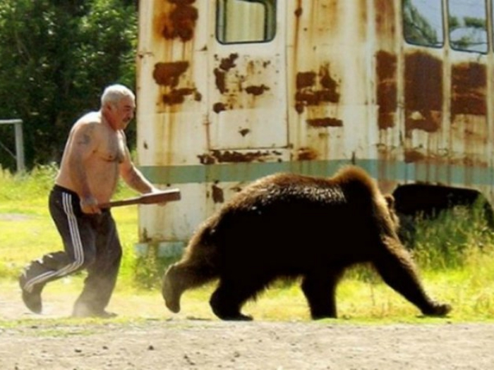 Мужчина прогоняет медведя, который забрался к нему на участок